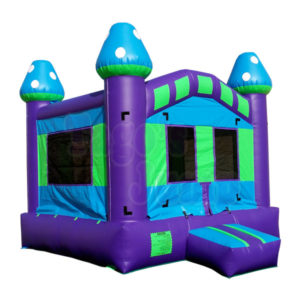 Bouncer inflatale