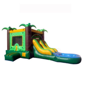 waterslide wsc-153